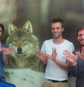 Wolves for Natura 2000, Staff of NABU-BirdLife in Germany