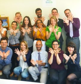 Happy Natura 2000 day from the BirdLife Europe office!