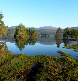 The seasonal lake of Pivka – foto: Erika Kovacic