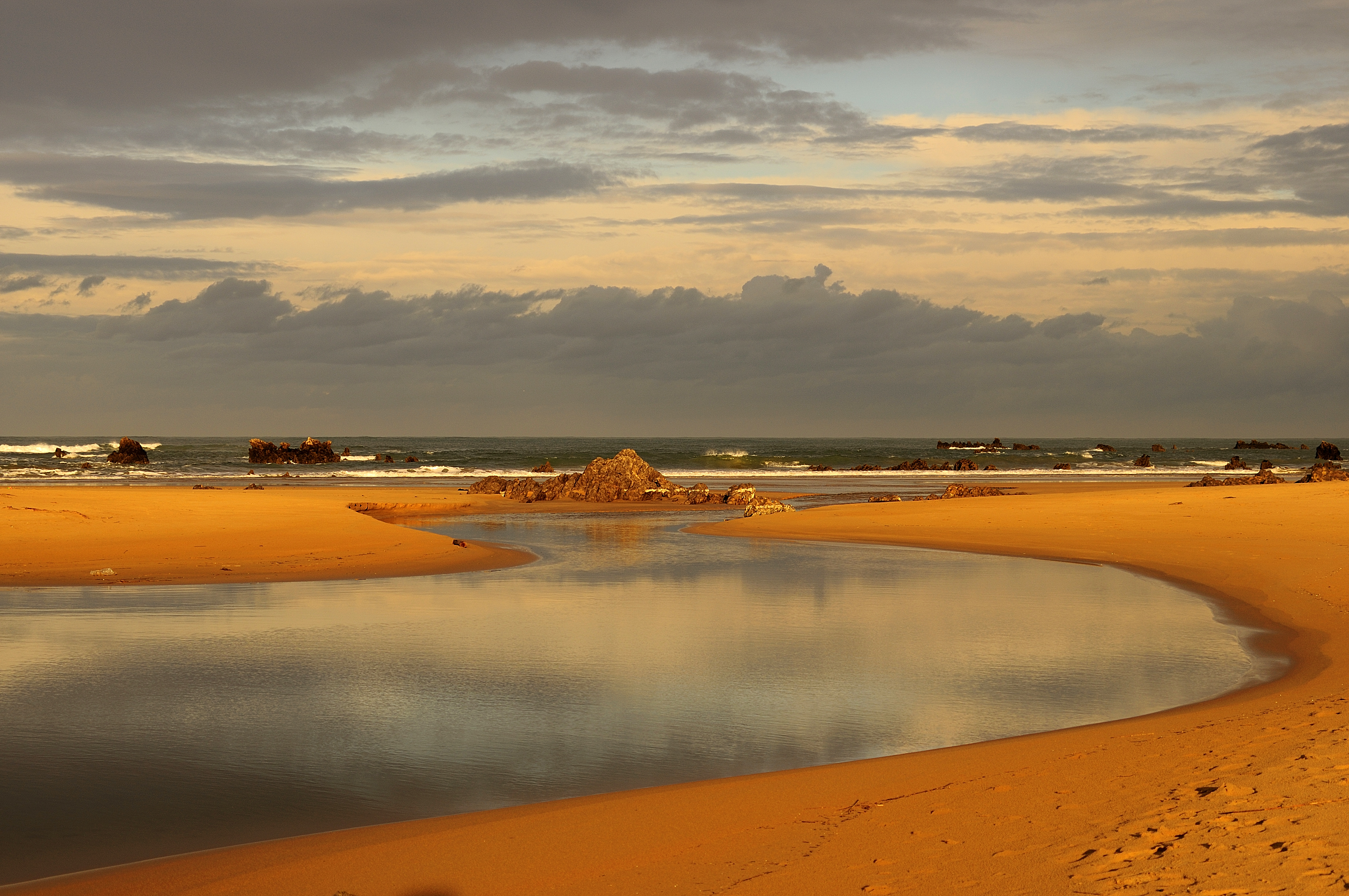 Juan-Cuetos_-habitats-costeros_Noja_Alta
